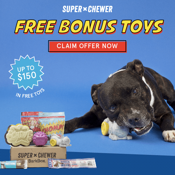 BarkBox Super Chewer Coupon: Get FREE Bonus Toy Every Month! LAST DAY!