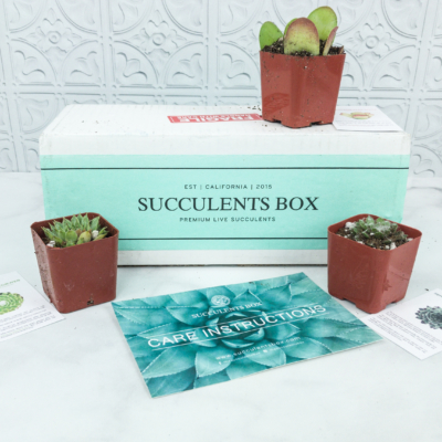 Succulents Box August 2018 Subscription Box Review + Coupon