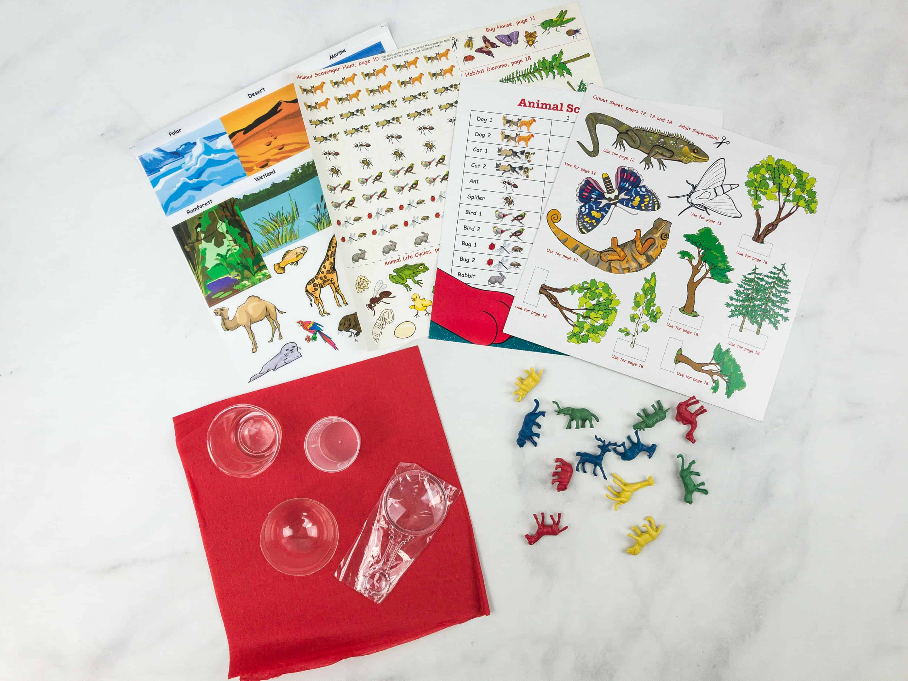 Clifford Science Club Subscription Box Review + Coupon – ANIMAL SCIENCE
