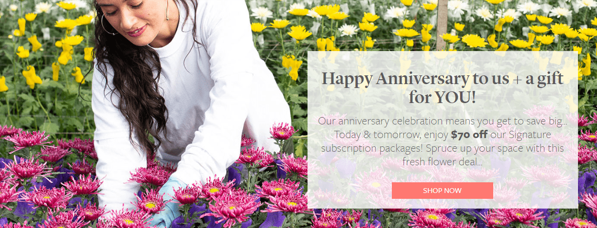 Enjoy Flowers Anniversary Sale: Get $70 Off Single Or Double Signature Flower Subscription!