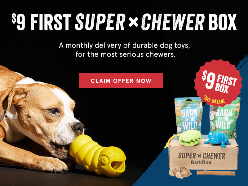 BarkBox Super Chewer Promo: First Box $9 with 6+ Month Subscription! LAST DAY!  + September Sneak Peek!