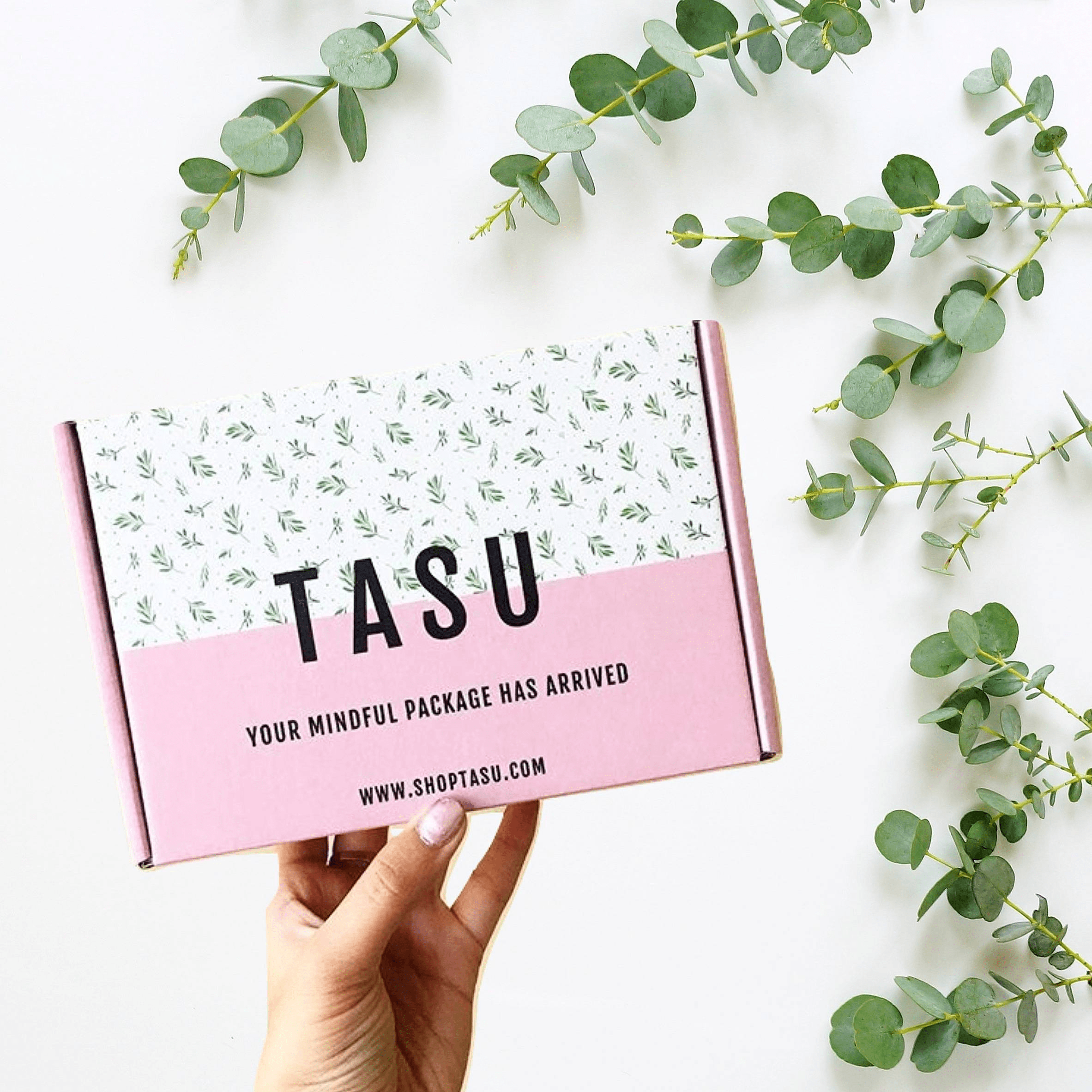 Tasu December 2018 Spoiler #3 + Coupon!