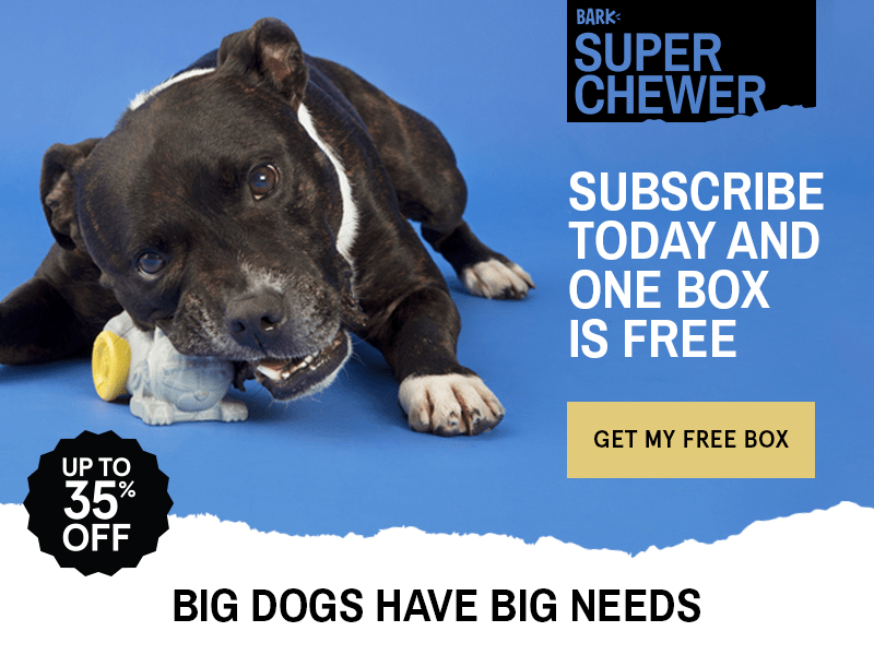 BarkBox Super Chewer Promo: Get a FREE Month With 6+ Month Subscription! LAST DAY!