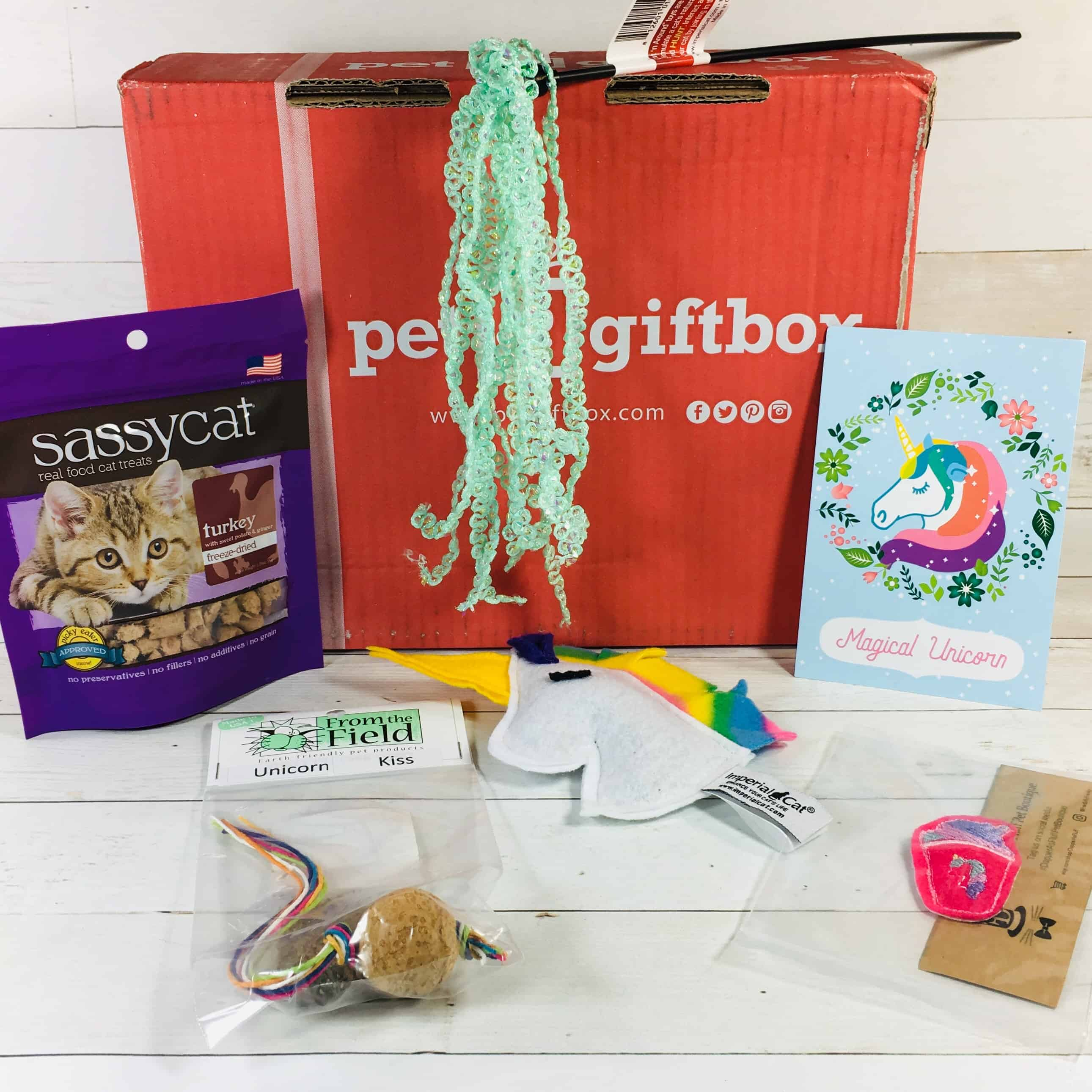 PetGiftBox Cat September 2018 Subscription Box Review + 50% Off Coupon