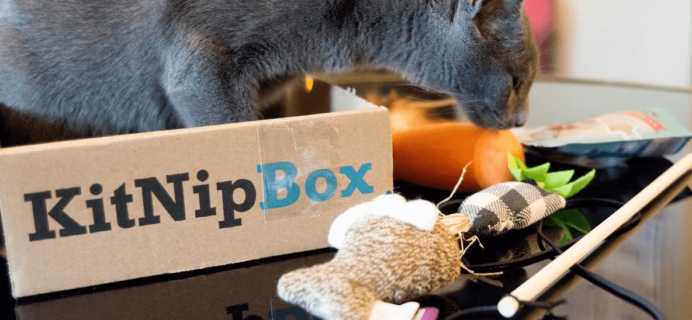 KitNipBox Halloween Sale: Get 16% Off First Month!