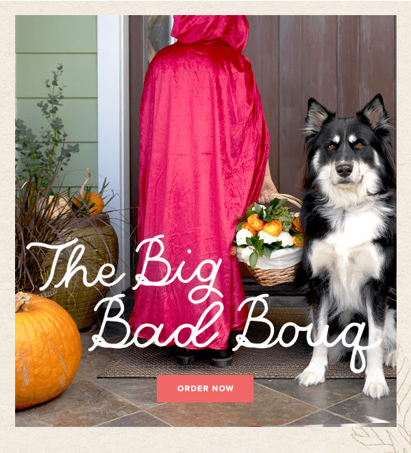 The Bouqs Halloween Sale: Get Free Upgrade To Deluxe Size!