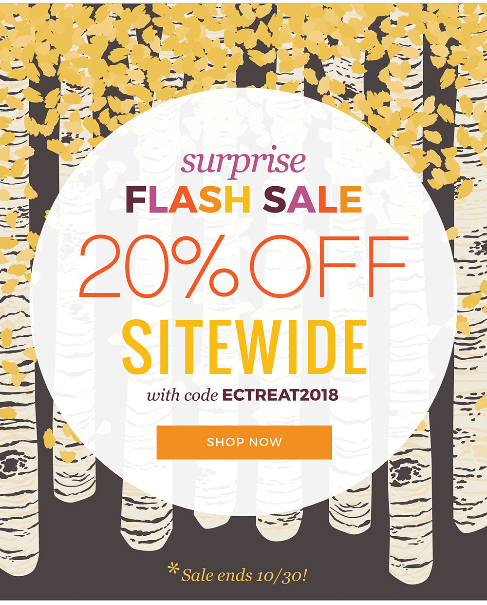 Erin Condren Surprise Flash Sale: Get 20% Off Sitewide!