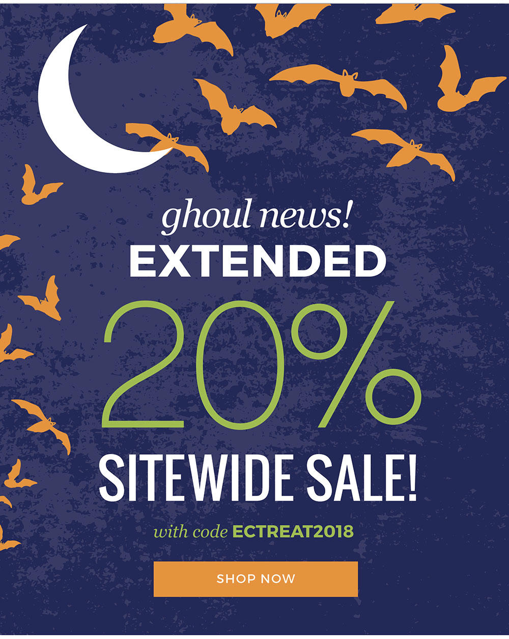 Erin Condren Surprise Flash Sale: Get 20% Off Sitewide! EXTENDED!