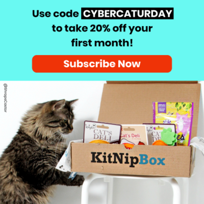 KitNipBox Cyber Caturday Coupon: Get 20% Off First Month! UNTIL TONIGHT ONLY!
