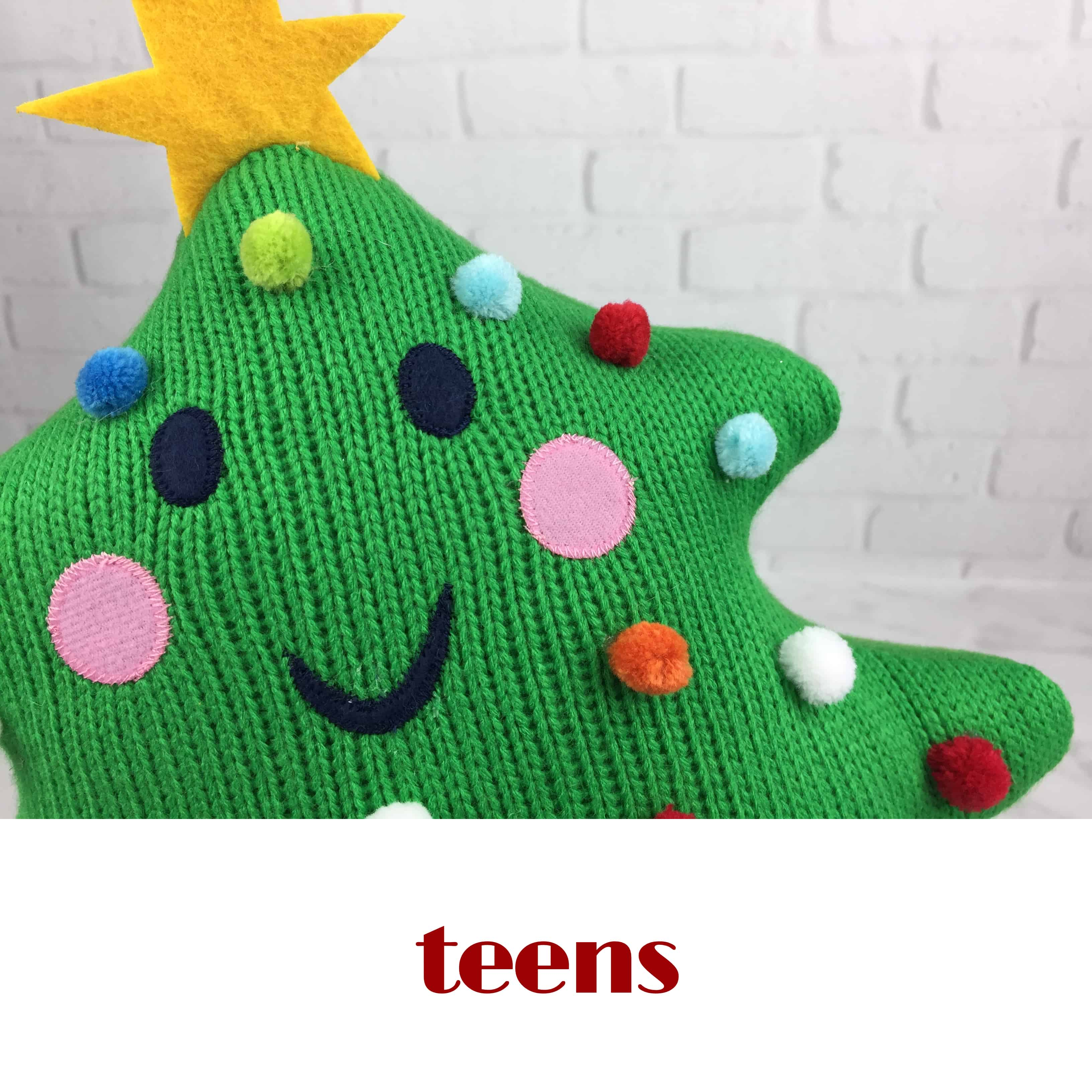 Best Subscription Box Gift Ideas for Teens & Tweens