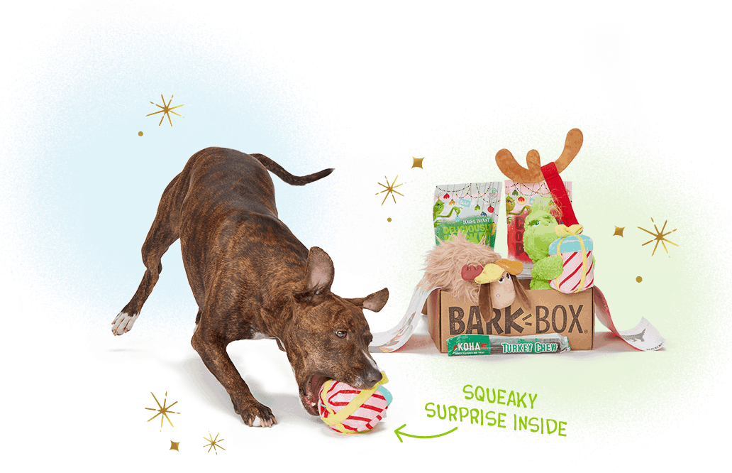 BarkBox Cyber Muttday Coupon: Get FREE Bonus Toy On 6+ Subscription!