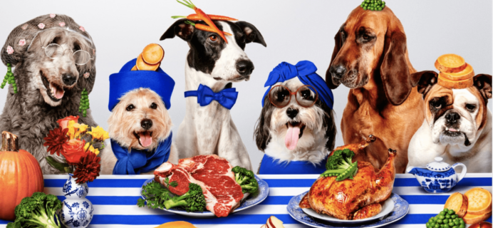 This PetPlate CYBER MONDAY Coupon is Ridiculous: Get 75% Off First Box!