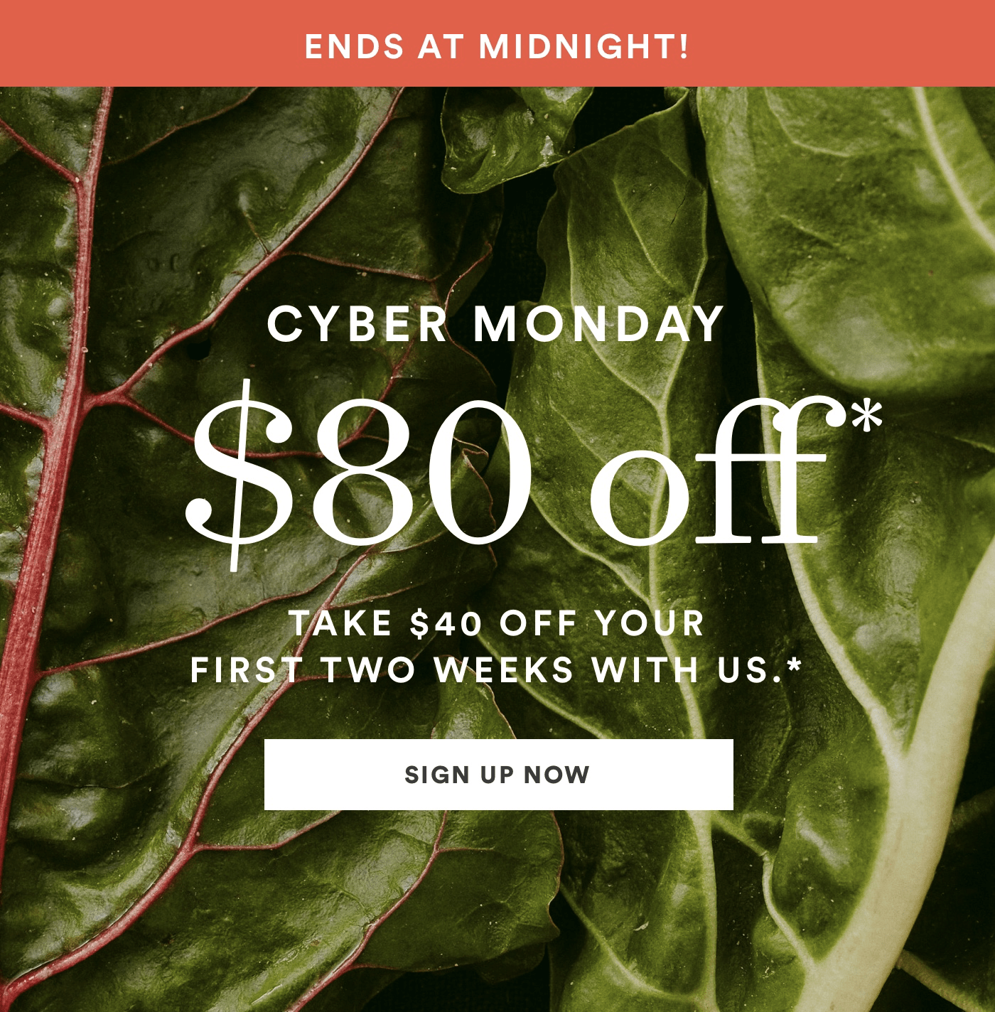 Plated Cyber Monday 2018 Coupon: Save $80 On First TWO Boxes!