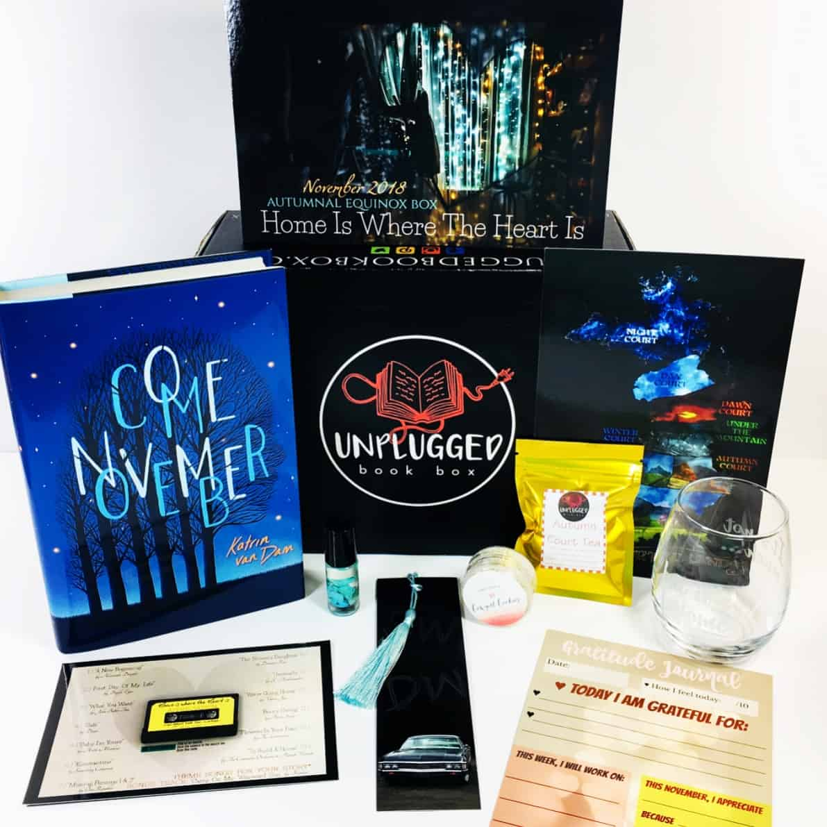 Unplugged Book Box November 2018 Subscription Box Review