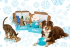 PawPack Merges With PetBox + December 2018 Theme Spoilers+ 50% Off Coupon!