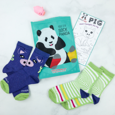 Panda Pals November 2018 Subscription Review & Coupon