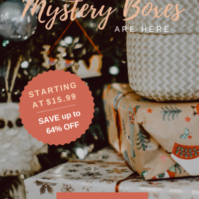 GlobeIn Mystery Boxes Available Now + Coupons!