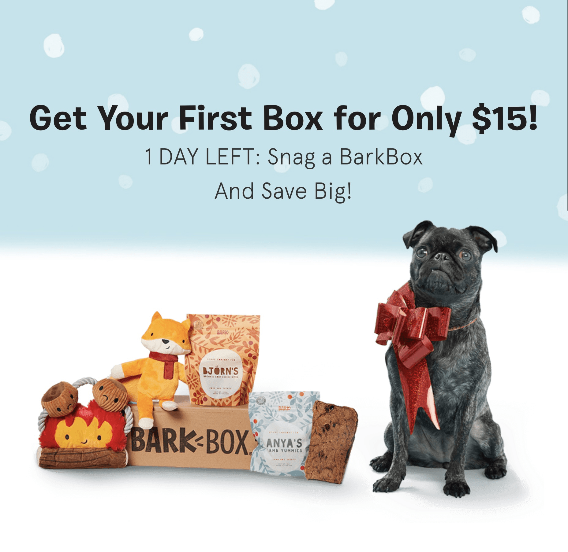LAST DAY Barkbox Flash Sale! First BarkBox for Just $15 – $14 Off Coupon!