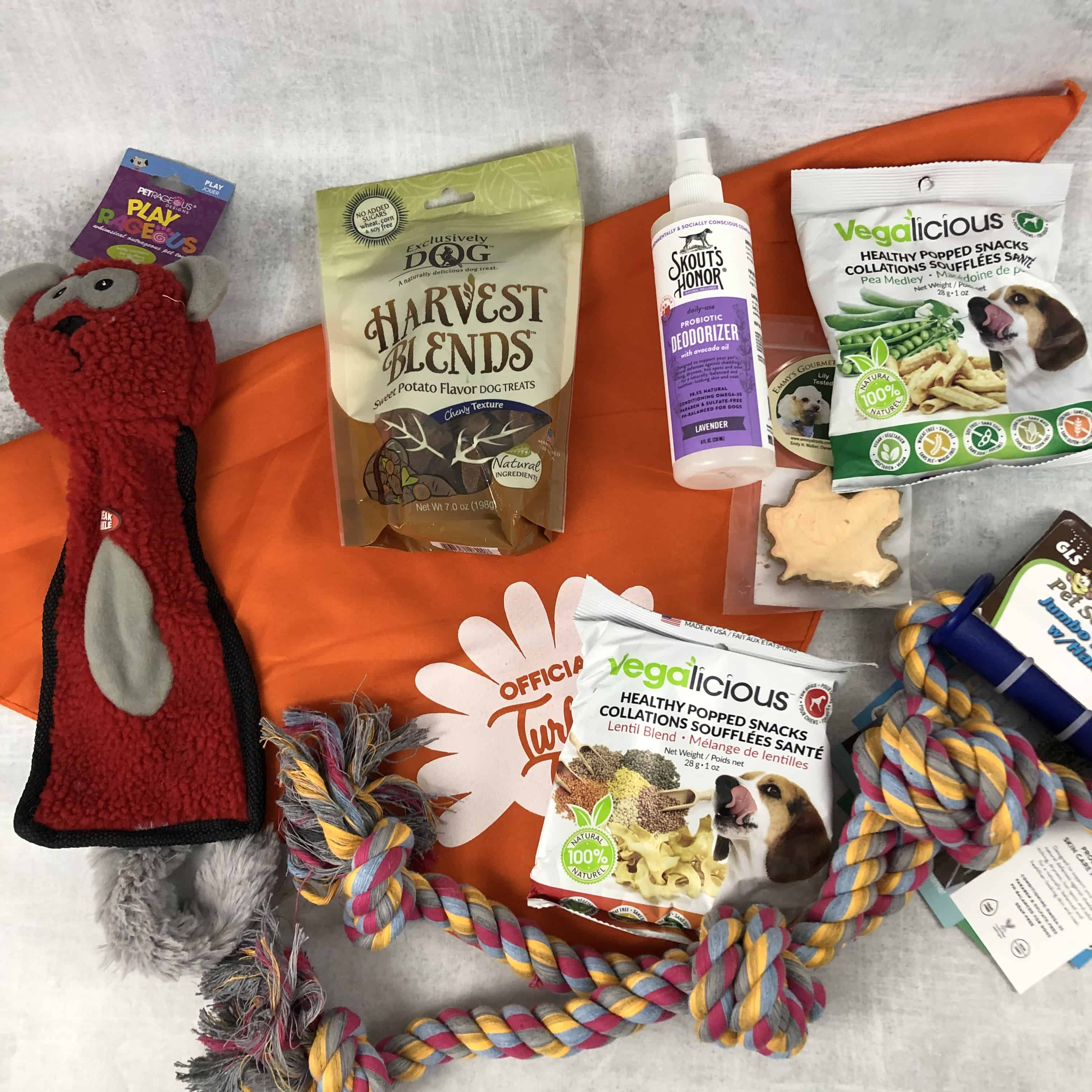 Pet Treater Deluxe Dog Pack Subscription Box Review + Coupon – November 2018