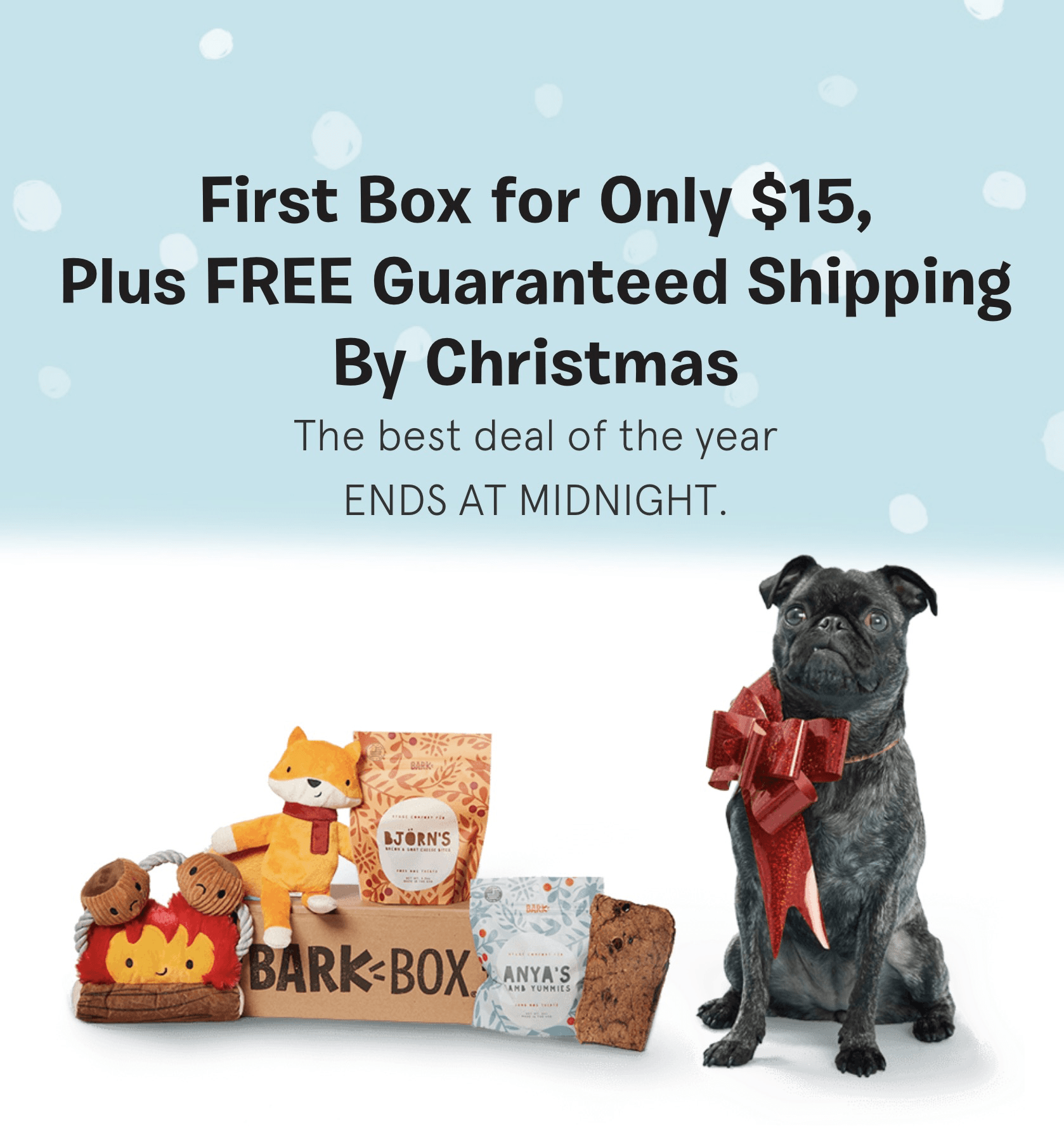 Barkbox Flash Sale EXTENDED! First BarkBox 50% Off Coupon + FREE Guaranteed Shipping!