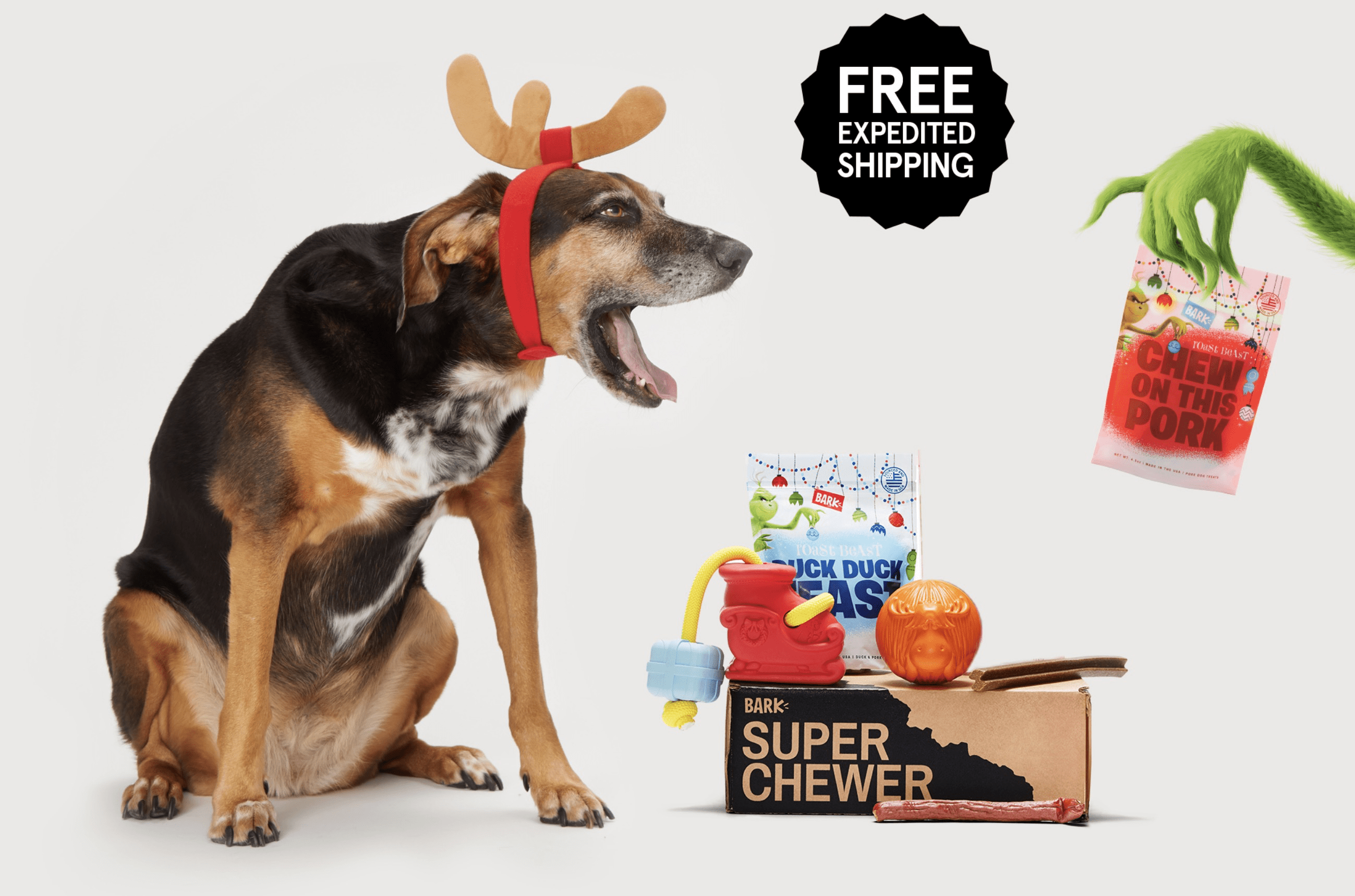 BarkBox Super Chewer Coupon: Get Free Expedited Shipping!