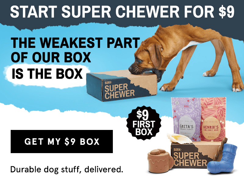 BarkBox Super Chewer Coupon: First Month $9 Deal! LAST DAY!