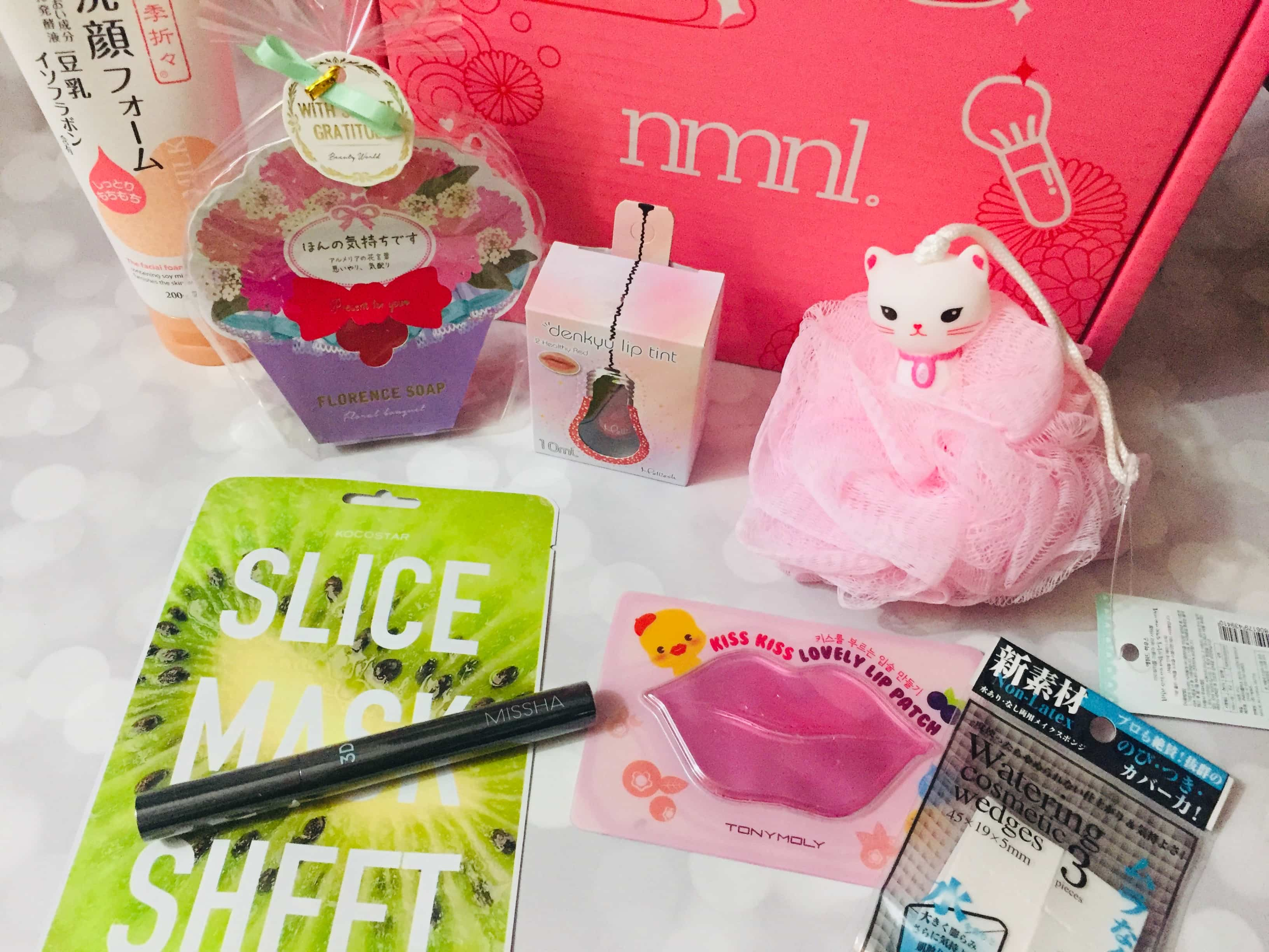 nmnl January 2019 Subscription Box Review + Coupon