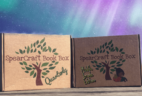 SpearCraft Book Box Middle Grade Edition Available Now + Coupon!