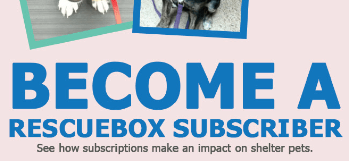 Rescue Box January Sale: Get 15% Off On All Subscriptions!