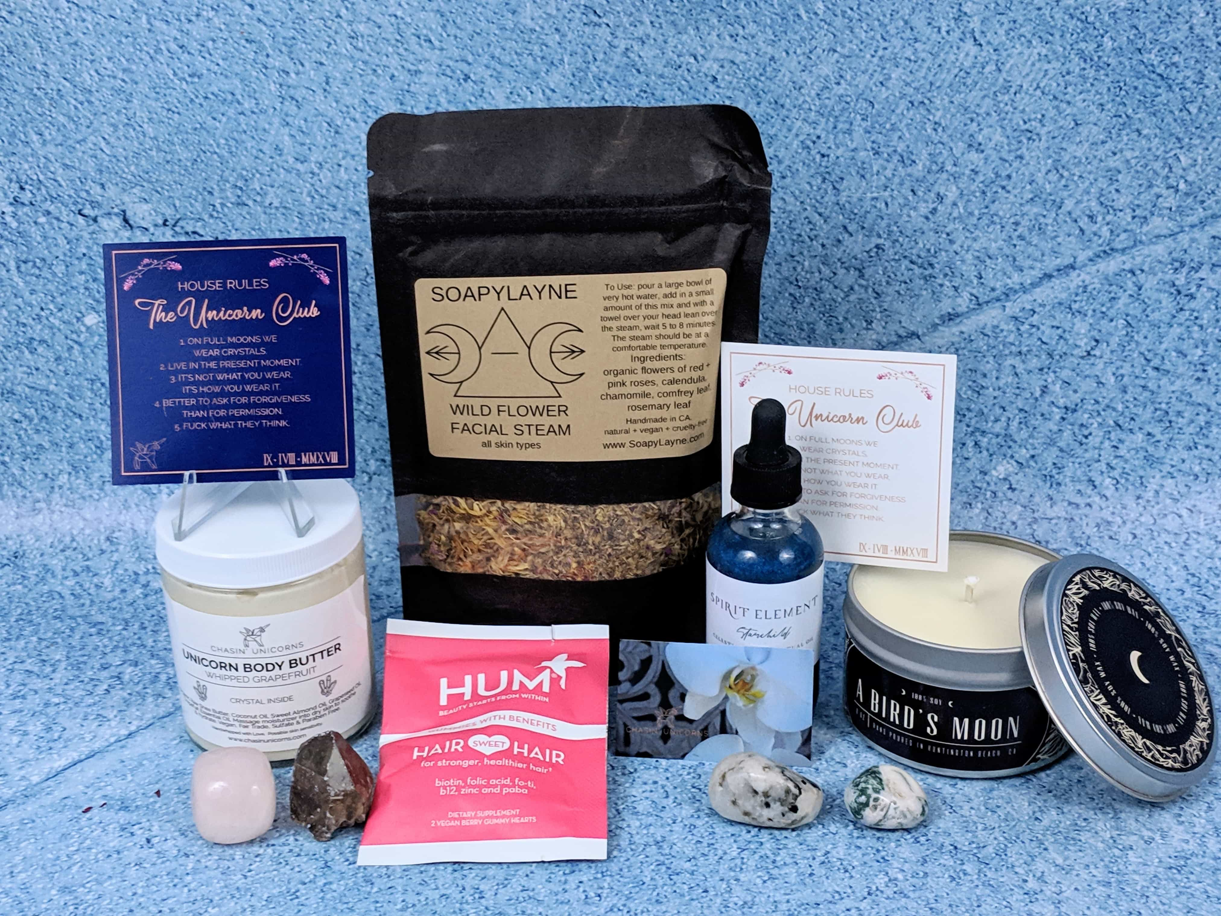 Chasin' Unicorns Subscription Box Review – December 2018