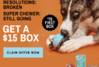 BarkBox Super Chewer Coupon: First Month $15 Deal – LAST DAY!