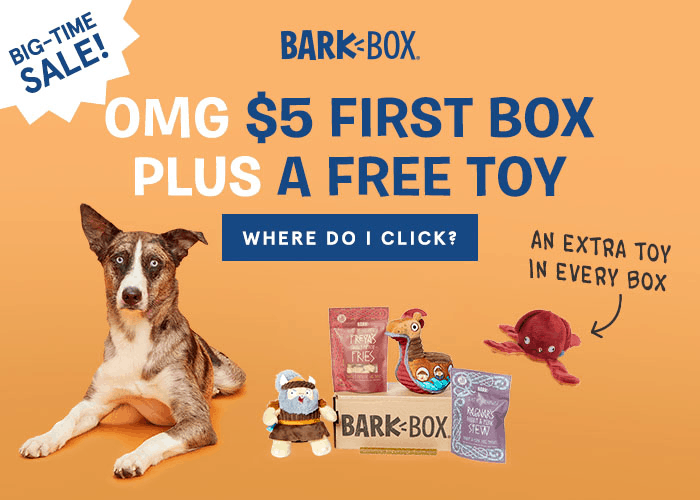 BarkBox Flash Sale: First Box $5 + FREE Extra Toy Club with 6 Month Subscription! LAST DAY!
