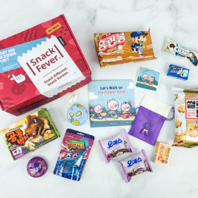 January 2019 Snack Fever Subscription Box Review + Coupon – Original Box
