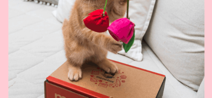 Meowbox February 2019 Theme Spoiler + Coupon!