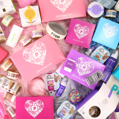 PINCHme Sample Day February 2019