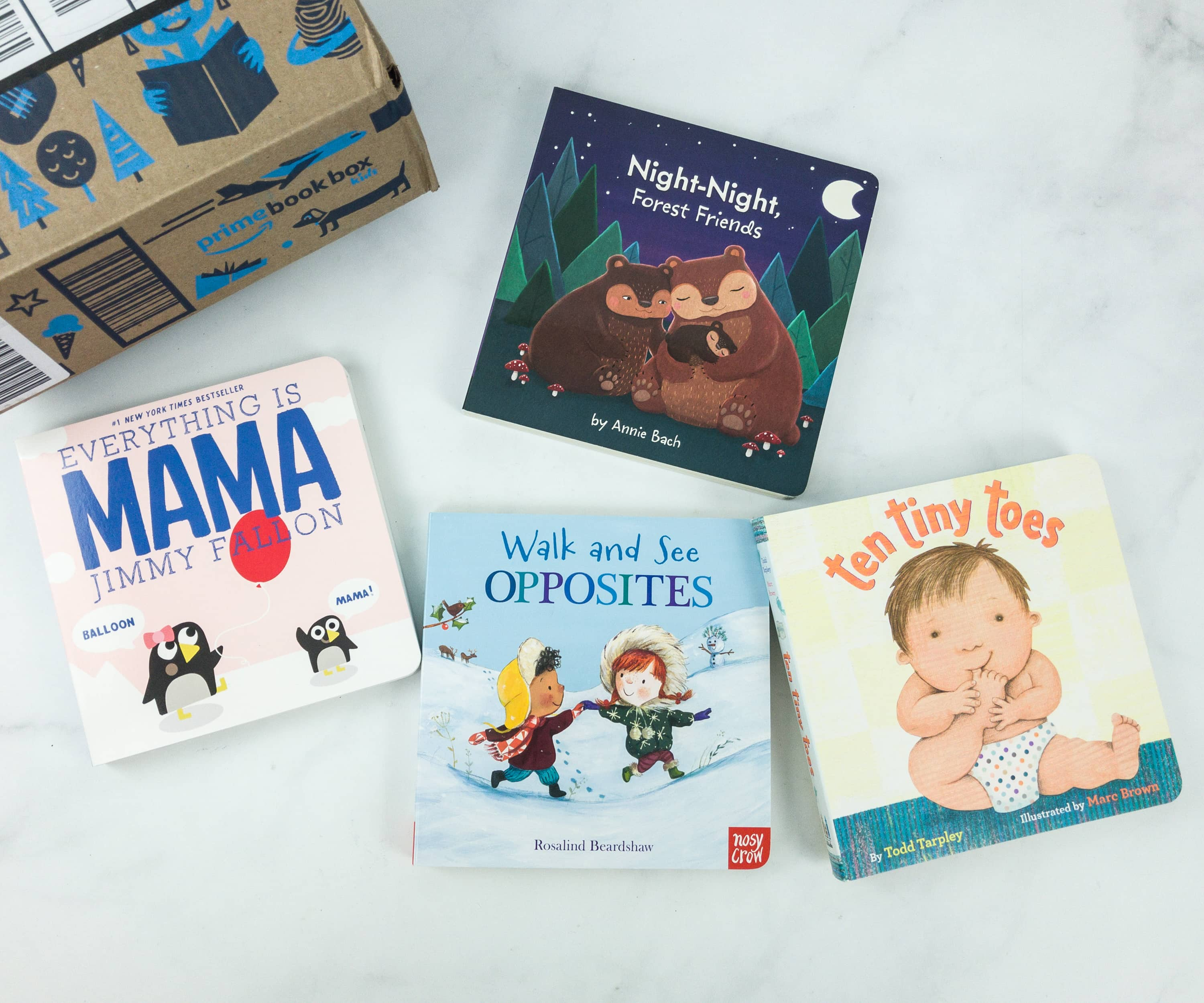 Amazon Prime Book Box Kids February 2019 Review – Baby to 2 Years