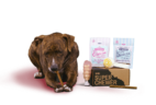 BarkBox Super Chewer Limited Edition Valentine's Day Theme Still Available!