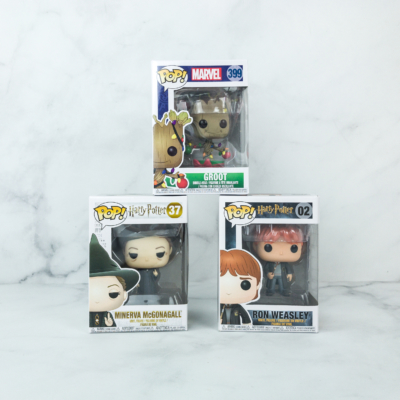 Pop In A Box February 2019 Funko Subscription Box Review & Coupon
