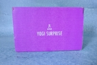 Yogi Surprise Jewelry Box March 2019 Subscription Review + Coupon