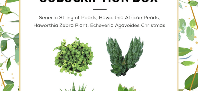 Succulents Box March 2019 Full Spoilers + Coupon!
