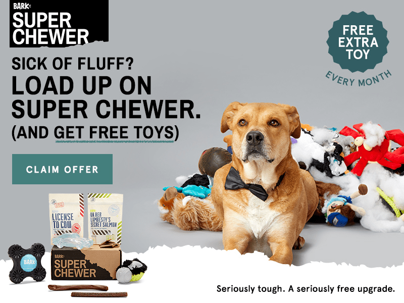 BarkBox Super Chewer Coupon: Last Call for FREE Bonus Toys!