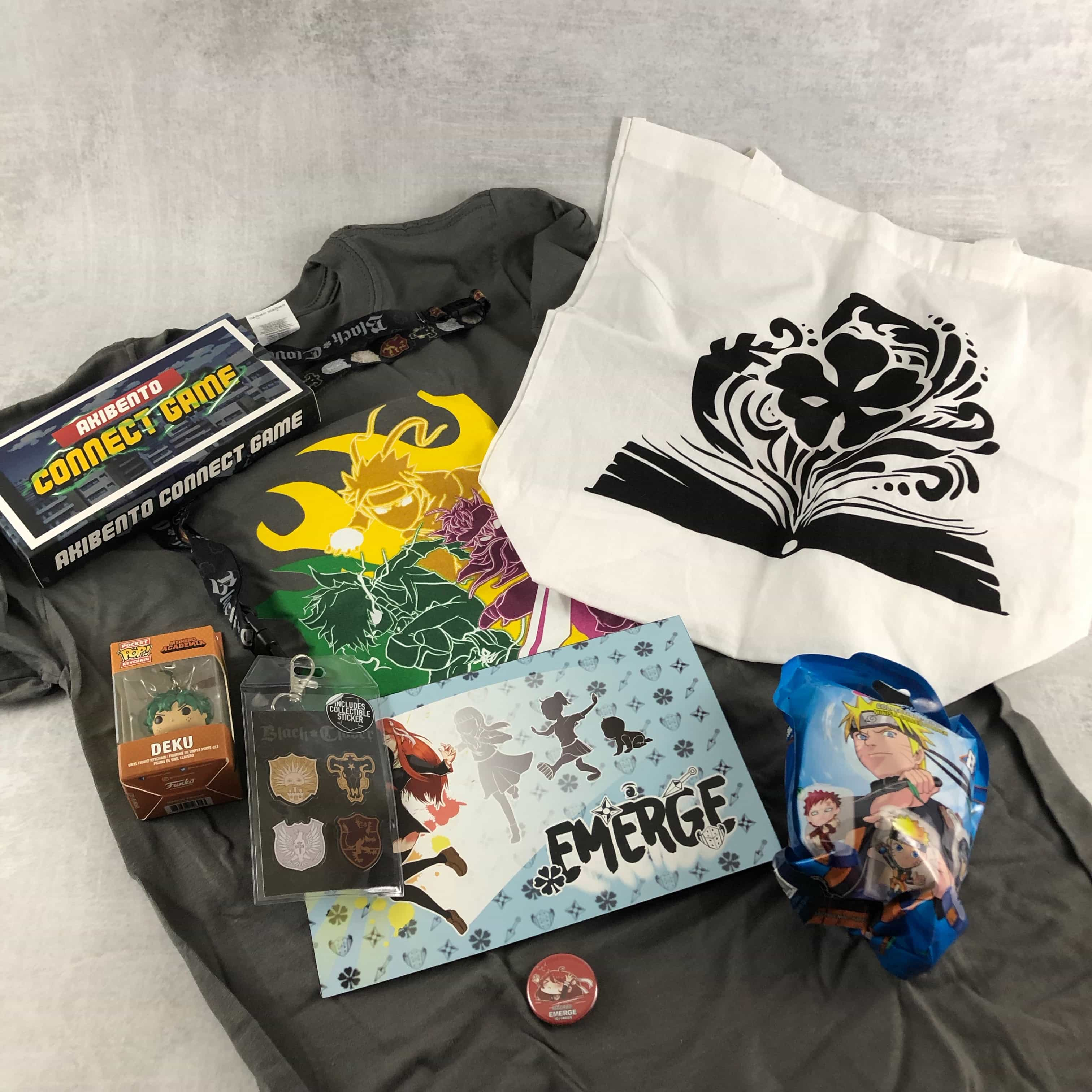 Akibento February 2019 Subscription Box Review & Coupon – EMERGE