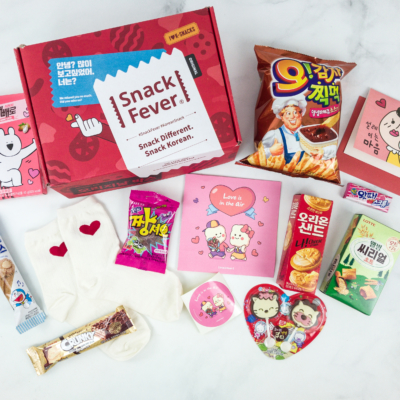 February 2019 Snack Fever Subscription Box Review + Coupon – Original Box