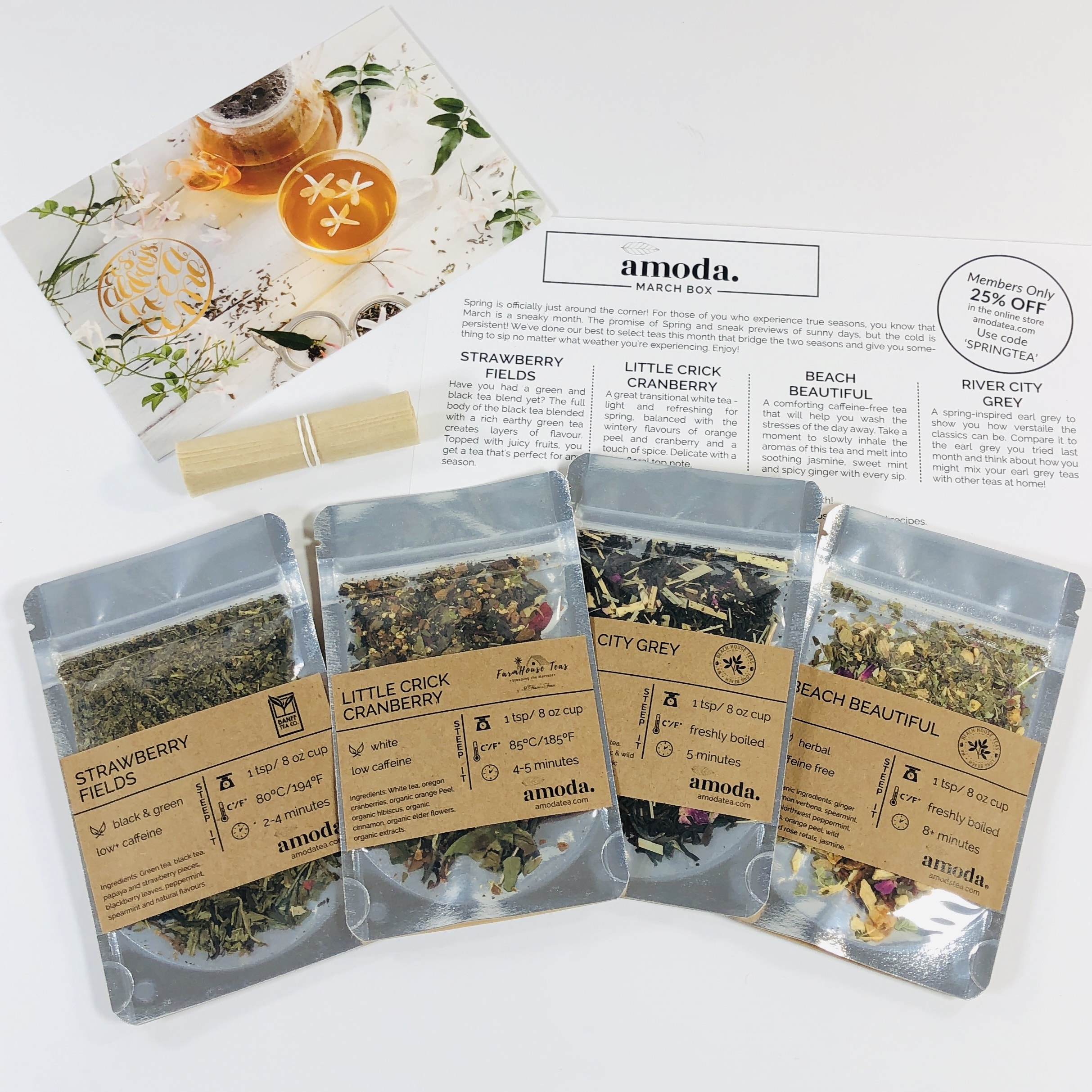 Amoda Tea March 2019 Subscription Box Review + Coupon!