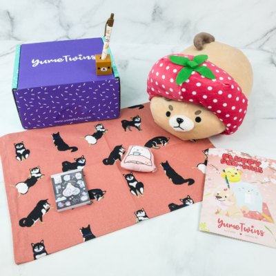 YumeTwins April 2019 Subscription Box Review + Coupon