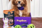 PupBox Back To School Sale: Get Your First Box For Just $4!