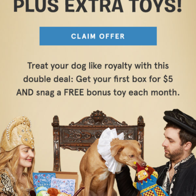 BarkBox Flash Sale: First Box $5 + FREE Bonus Toy Every Month!