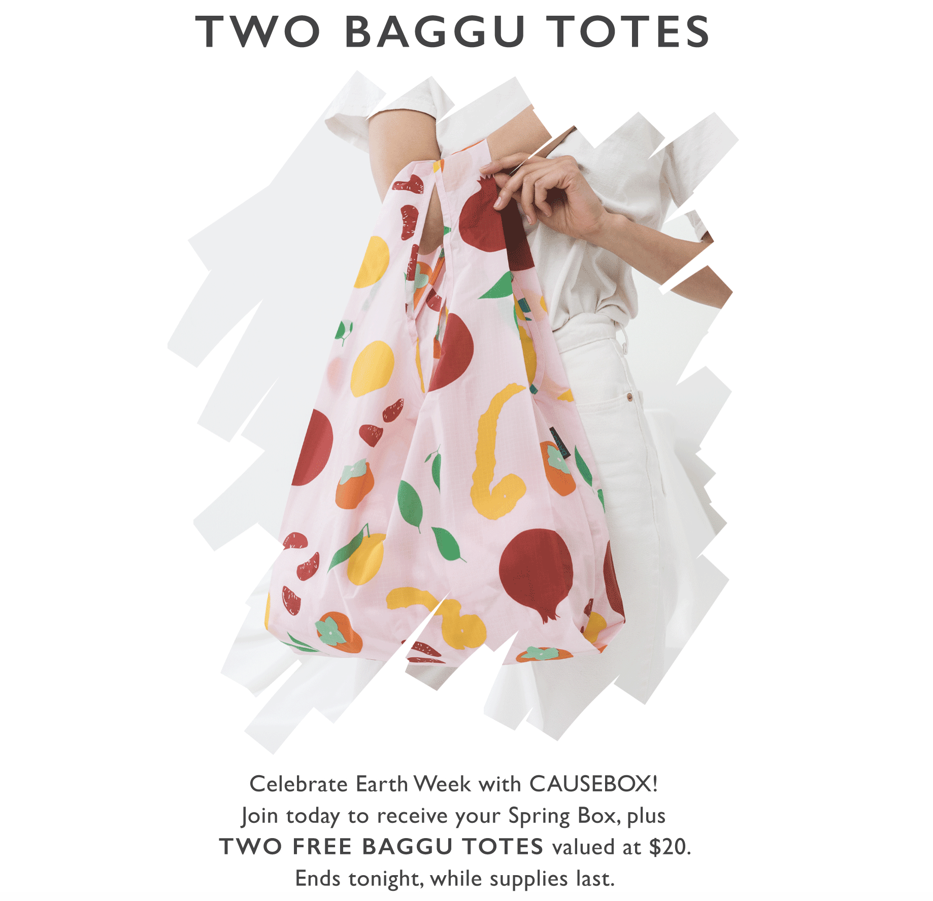 CAUSEBOX Deal: Two Free Baggu Totes with First Box – TODAY ONLY!