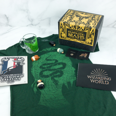 JK Rowling's Wizarding World Crate March 2019 Review + Coupon