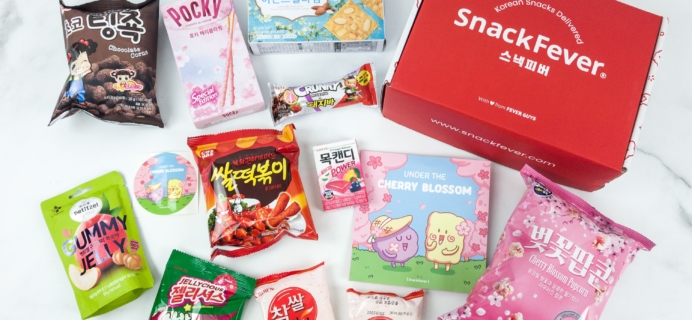 March 2019 Snack Fever Subscription Box Review + Coupon – Original Box!